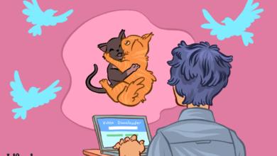 Comment sauvegarder les vidéos de Twitter sur iOS, Android et Windows