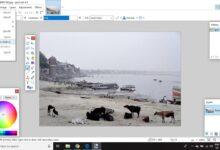 Comment utiliser les niveaux de Paint.NET pour améliorer une photo