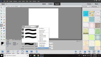 Création et utilisation de brosses personnalisées dans Photoshop Elements
