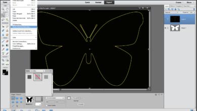 Dessiner le contour d'une forme avec des éléments Photoshop