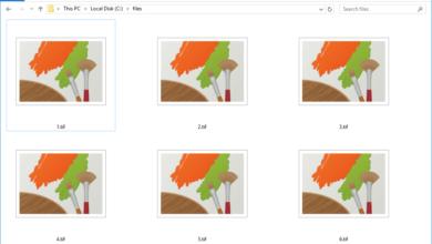 Explication des fichiers TIFF et TIF et comment les ouvrir