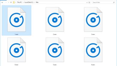 Fichiers WAV & WAVE (ce qu'ils sont et comment les ouvrir)
