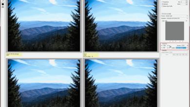 Lignes directrices concernant la taille des photos à partager en ligne