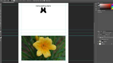 Modèle de carte de vœux et instructions pour Adobe Photoshop