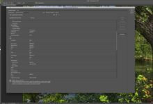 Raccourcis de l'outil de remplissage dans Photoshop et Elements pour gagner du temps