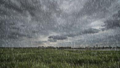 Tutoriel pour ajouter une fausse pluie à une photo dans GIMP