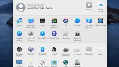 Vue d'ensemble du volet des préférences d'affichage du Mac