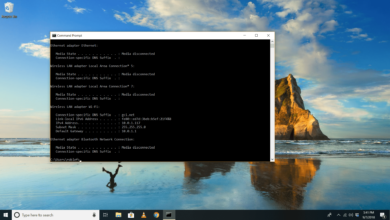 ipconfig - Utilitaire de ligne de commande Windows