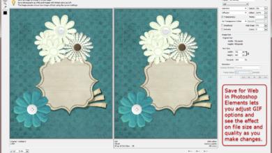 Comment convertir une image au format GIF