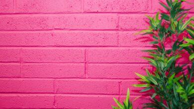 De quelle couleur est le fuchsia ? Symbolisme et utilisation dans le design